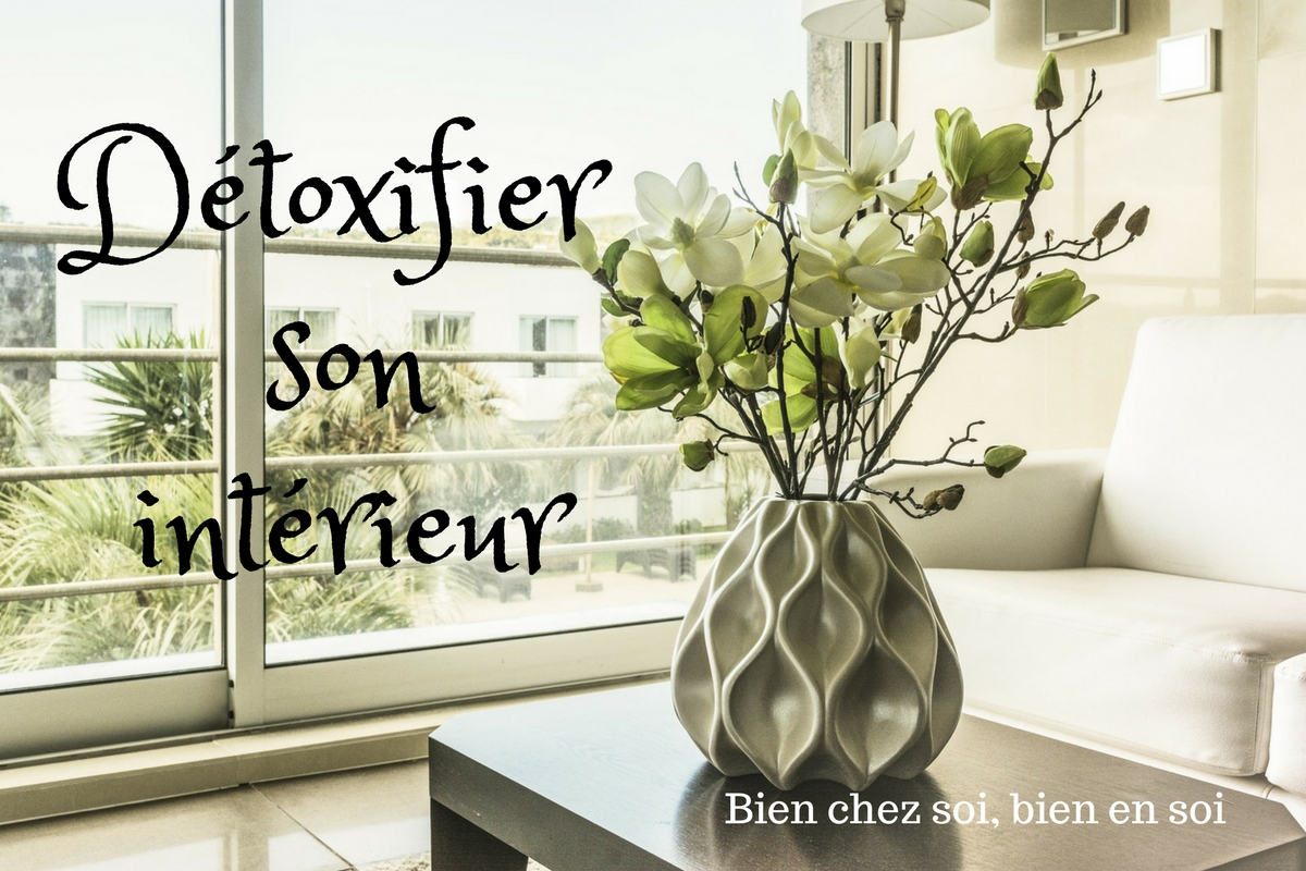 Détox : Comment purifier votre maison ?